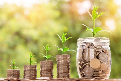 WolfShow ține cu casa și îți prezintă câteva idei simple, dar eficiente, despre cum să faci economii